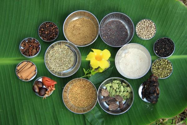 BASIS Reisen Indien Ayurveda-Gewürze