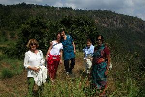 Indien Expertenreisen